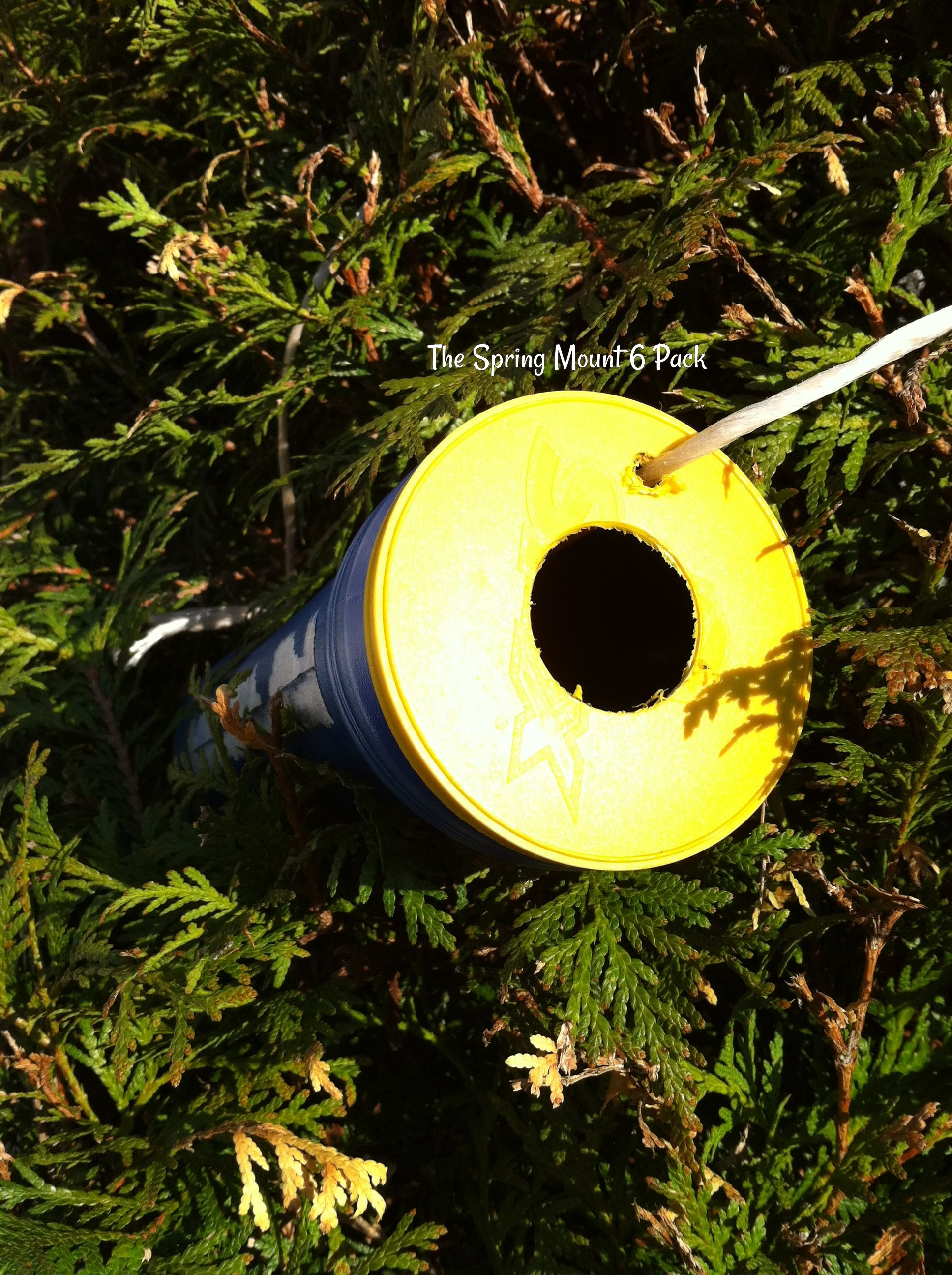 make a bird house using recycled materials