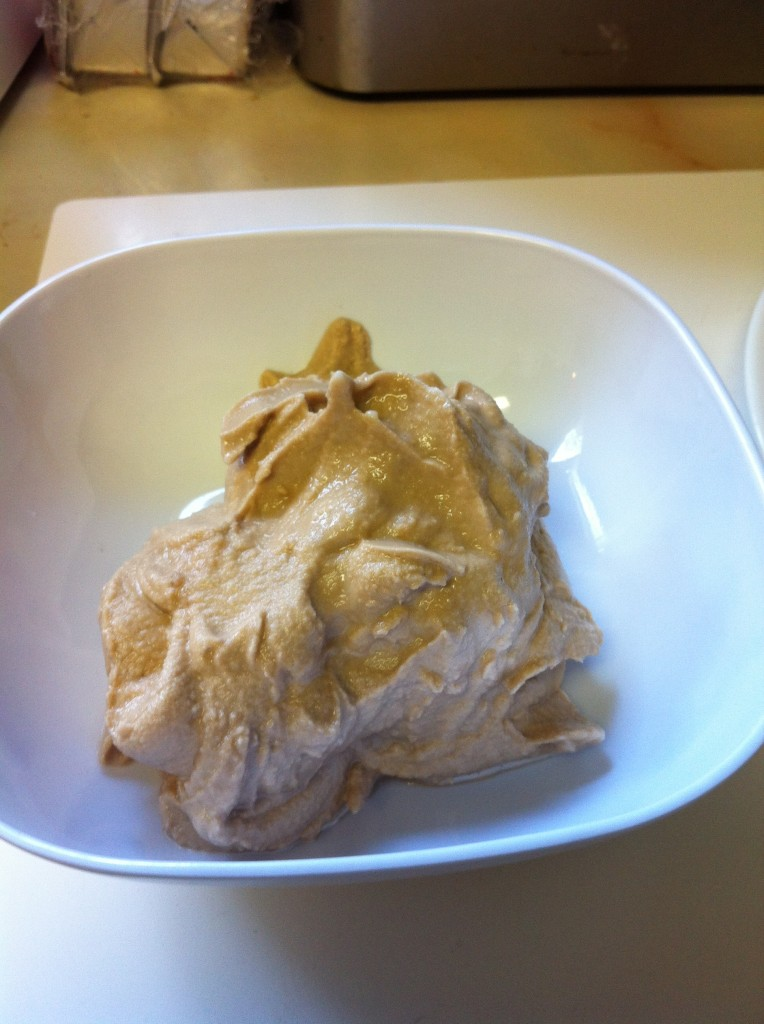 make ice cream in a bag