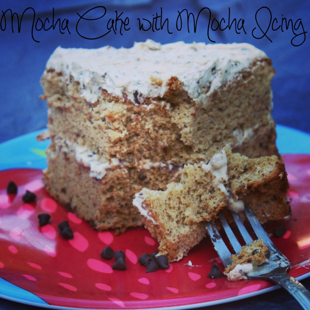 Mocha Cake with Mocha Icing- The Spring Mount 6 Pack