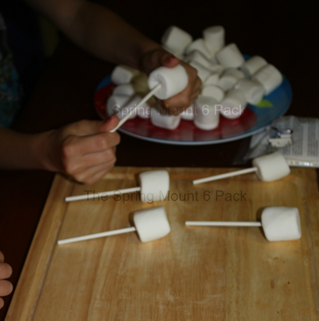 S'mores Lollipops- Easy Quick S'mores Recipe- The Spring Mount 6 Pack (1)