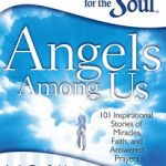 Angels Among Us- Chicken Soup for the Soul Giveaway (US/CAN 6/5)