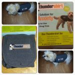 Thundershirt- A Natural Solution for Your Dog's Anxiety