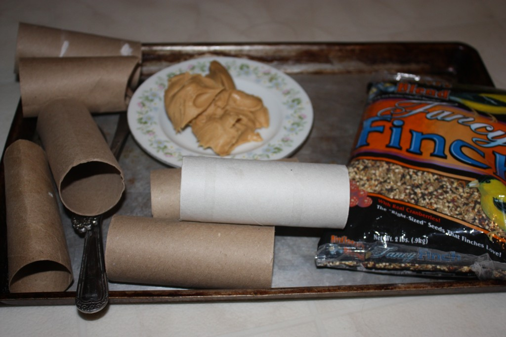 Toilet Paper Roll Crafts- Bird Feeder