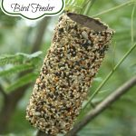 Recycled Toilet Paper Roll Bird Feeders