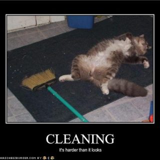 Cleaning is harder than it looks