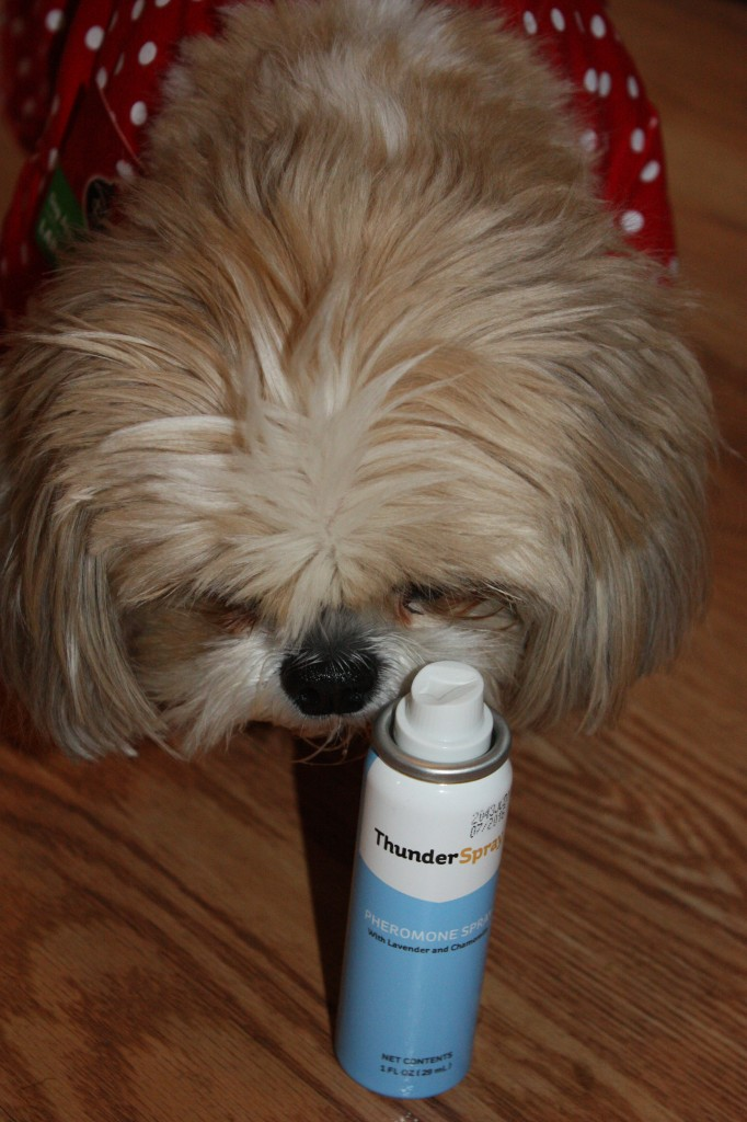 ThunderSpray for Dogs and Cats- Keeping pet calm during the holidays