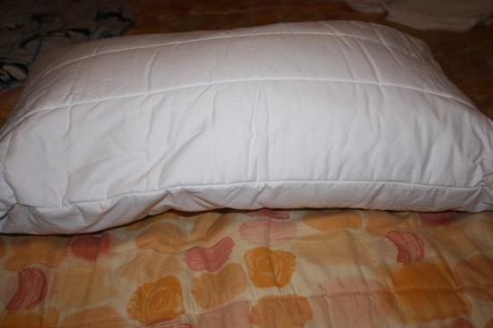 Reverie pillow