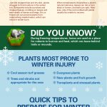 Preparing Your Yard and Garden For Winter