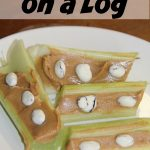 Snowballs on a log- Easy snacks for kids