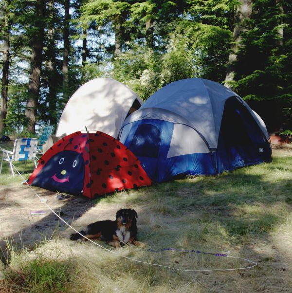 camping mysnackation.com