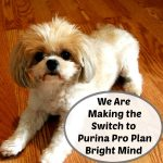 We Are Making the Switch to Purina Pro Plan Bright Mind