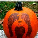PETrify Your Pumpkin for Halloween