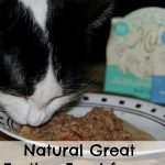 Natural Great Tasting Food for my Cow Kitty