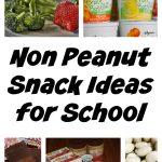 5 Non Peanut Snack Ideas