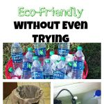 3 Ways to Be More Eco-Friendly Without Even Trying