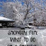 Snowday Fun: What to do on a snowday