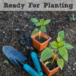 Get Your Garden Ready For Planting