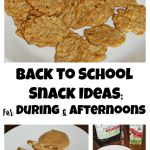 Back to School Snack Ideas: For During and Afternoons