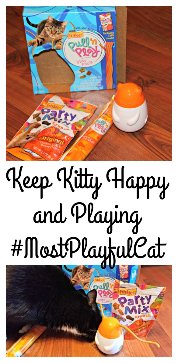 keep-kitty-happy-and-playing-mostplayfulcat