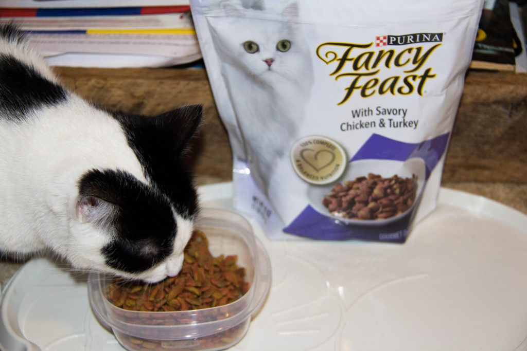 cat-lover-unite-at-giant-with-friskies-fancy-feast-and-tidy-cat-13