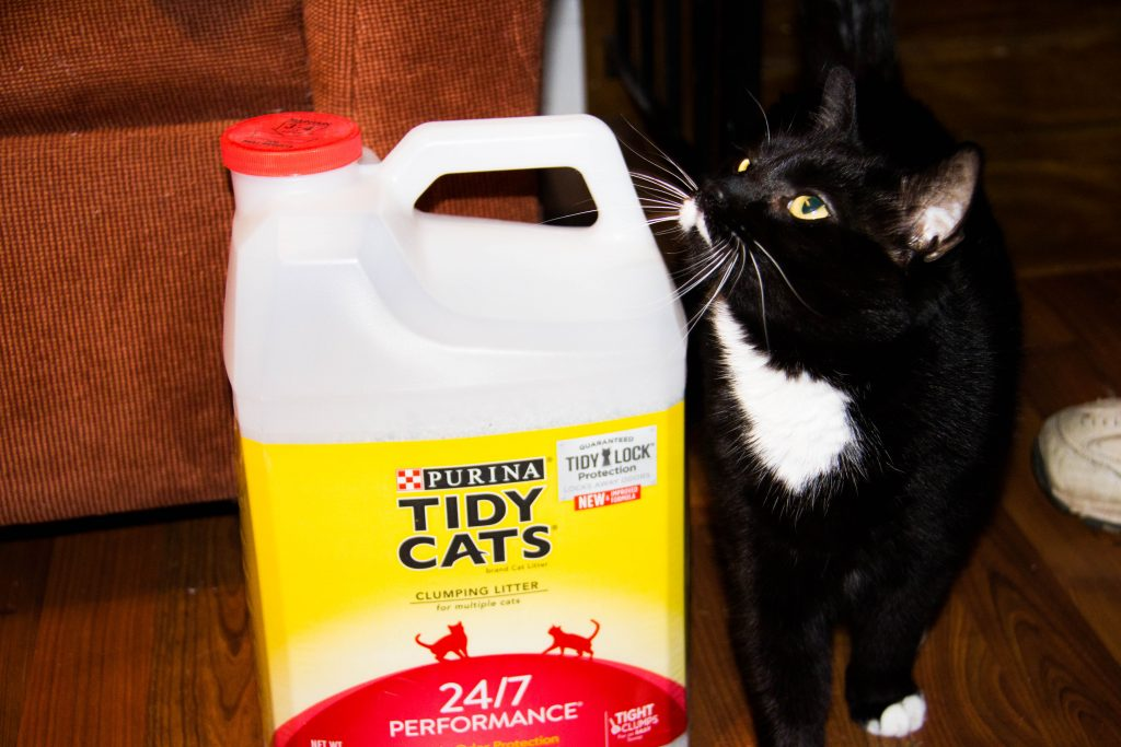 cat-lover-unite-at-giant-with-friskies-fancy-feast-and-tidy-cat