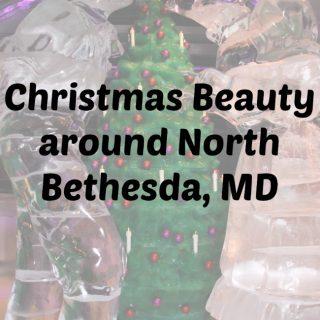 Christmas Beauty around North Bethesda, MD
