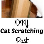 Spoil Your Kitty With a DIY Scratching Post
