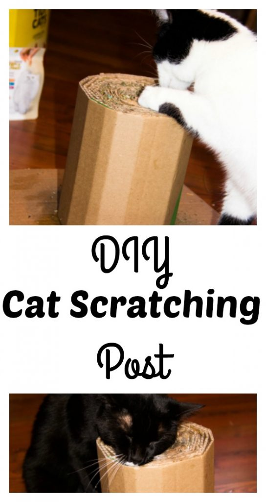 Create your own Cat Scratching post, a simple DIY project for you cat. Using cardboard and glue, the cats will love their new toy