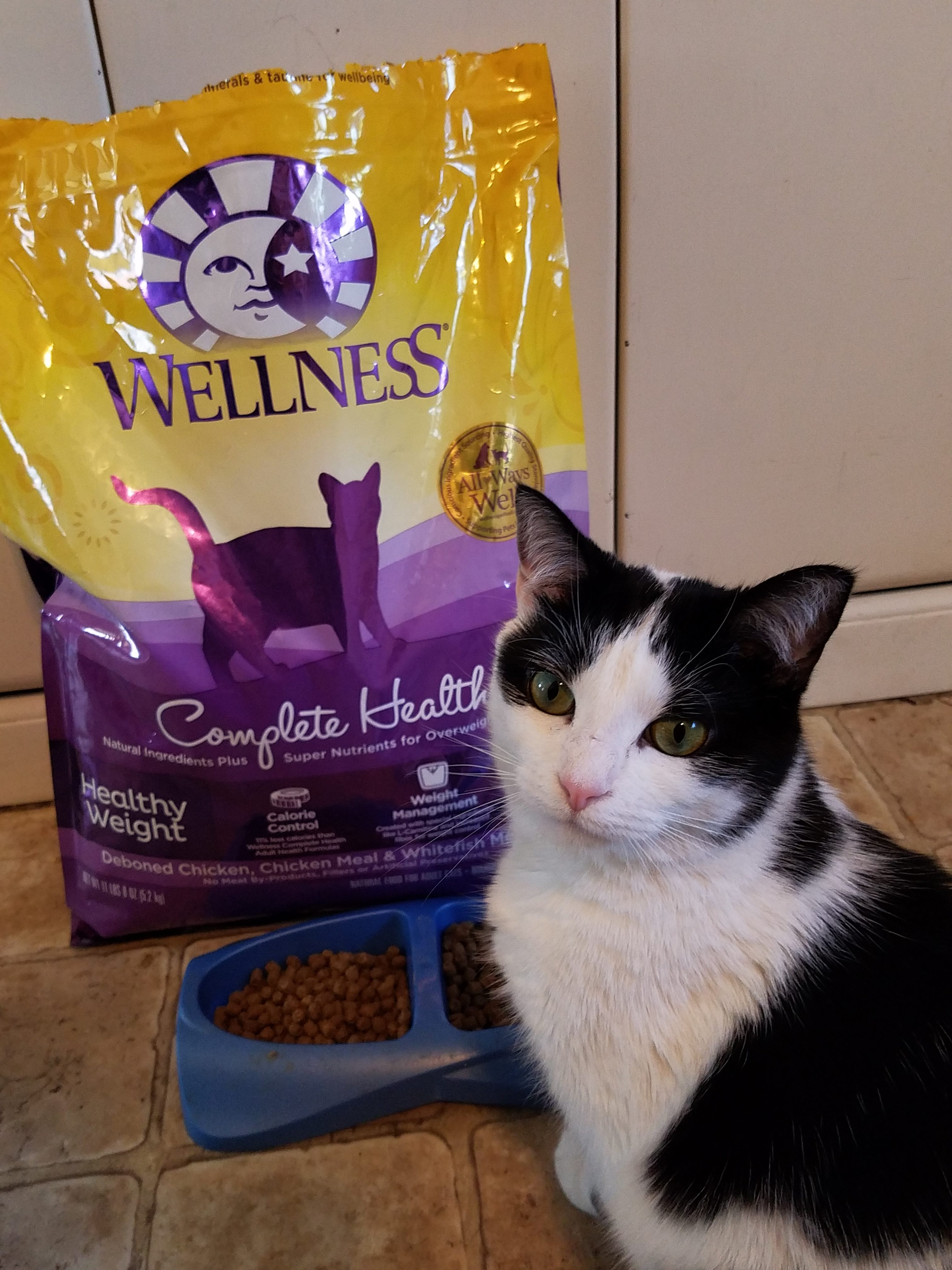 I love my cats and I want only the very best for them. Wellness brand cat food is grain free and offers complete health