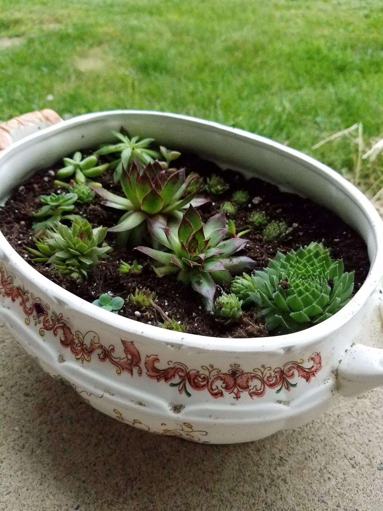 Using unique household items can create a special planters. Use family heirlooms or pieces that you find from yard sales to create a beautiful centerpiece.