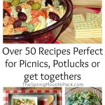 Over 50 Picnic Recipes for Every Occasion