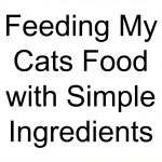 Feeding My Cats Food with Simple Ingredients