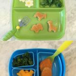 Bento Lunch Idea with Homemade Kale Chips
