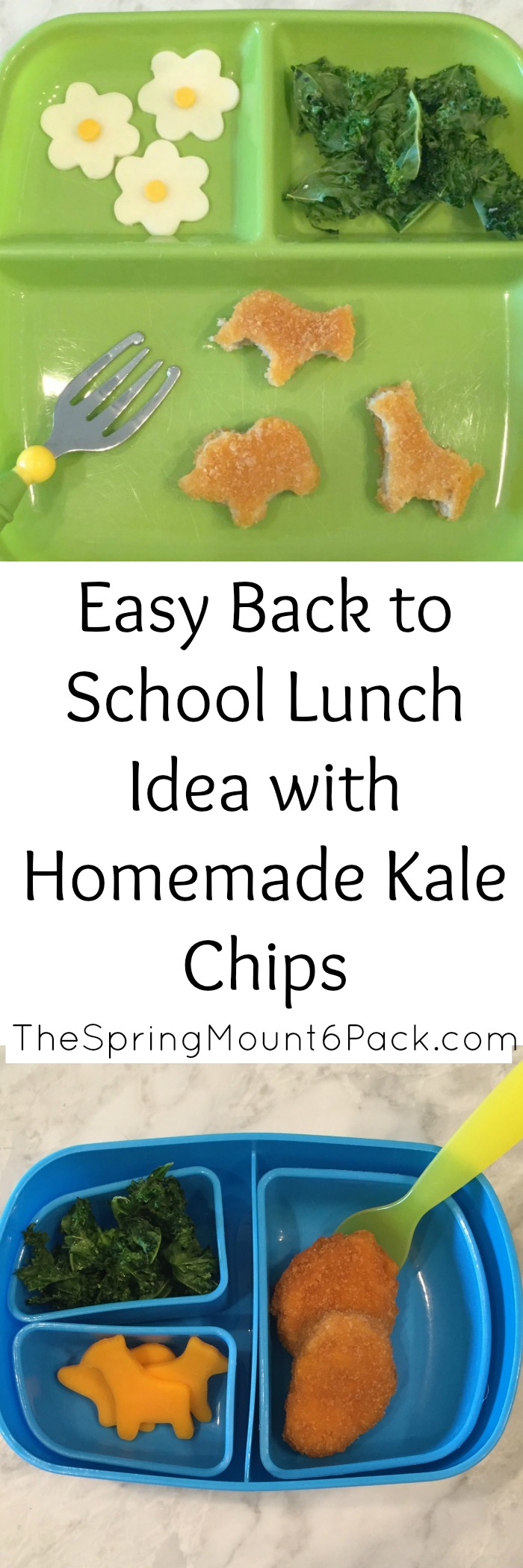 Back to school means back to school lunch ideas. Here is a fun back to school lunch idea with a bento box. Make a back to school lunch fun with homemade kale chips and fun shaped cheese.