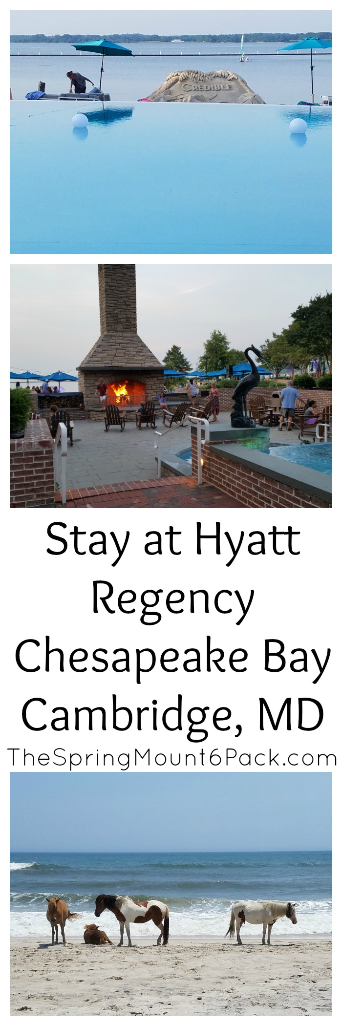 Looking for a beautiful hotel to stay at while visiting Maryland's Eastern Shores? Hyatt Regency Chesapeake Bay has plenty to offer.
