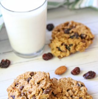 Whether you are watching your carbs or need gluten free recipes, chickpea flour cookies are a delicious gluten free cookie option.
