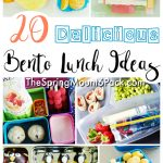 20 Fun Lunch Bento Box Ideas