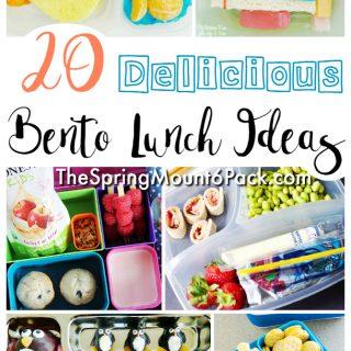 20 Fun Lunch Bento Box Ideas