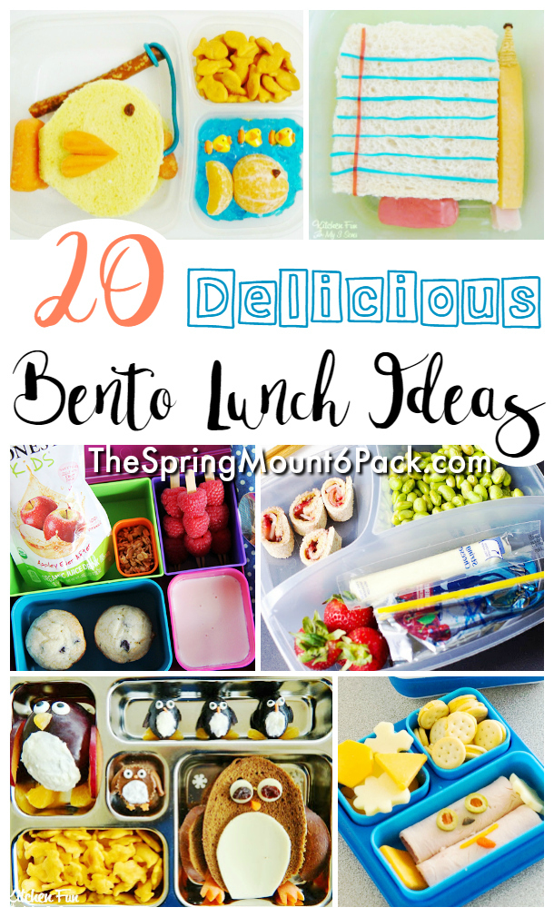 Looking for some fun Bento Box ideas? These Bento boxes will have your kids begging to pack lunch. Simple to make, try these Bento Box lunch ideas.