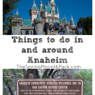 Heading to Anaheim? There are other things do than Disneyland. Here are some suggestions of things to do in and around Anaheim.