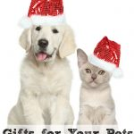 Gifts for Your Pets Holiday Gift Guide