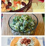Memorial Day/ 4th of July Picnic Recipes