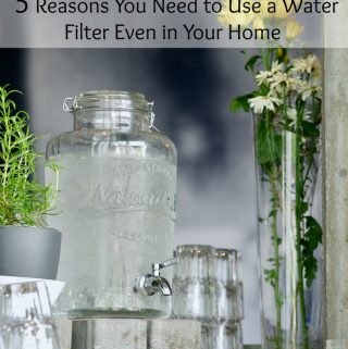Clear Doesn't Always Mean Clean: 5 Reasons You Need to Use a Water Filter Even in Your Home
