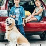Road trips and your dog