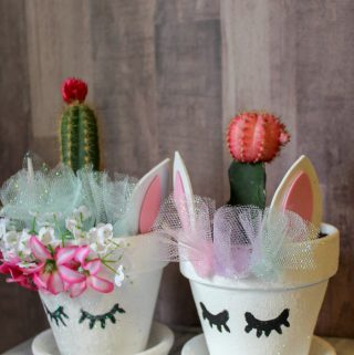 Unicorn Planter With a Cactus Horn | A Crafty Way to Show Off Your Plants