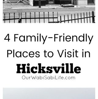 4 Family-Friendly Places to Visit in Hicksville