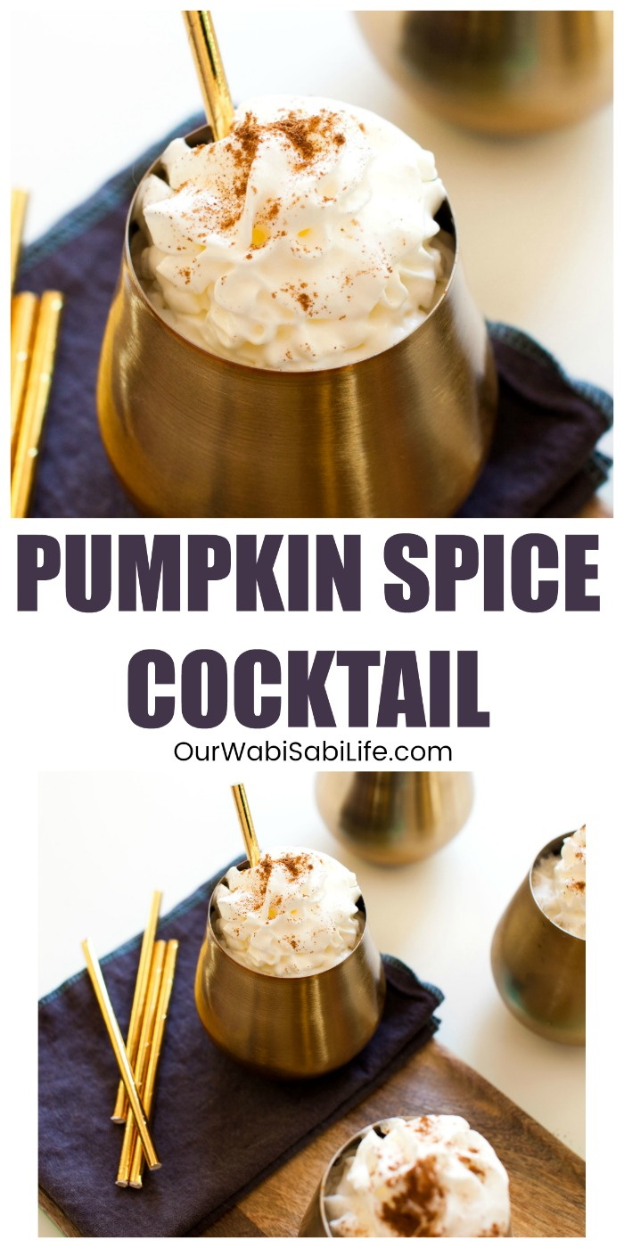 Do you love the flavors of pumpkin spice? Looking for pumpkin drinks that make the perfect pumpkin cocktail? You will love the taste of this Pumpkin Spice Cocktail that is easy to make. #pumpkinspice #cocktail