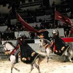 5 Reasons You Need to go to Medieval Times