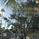 Tropical Palms RV Resort in Orlando – Rent a Cabin or Stay in Your RV