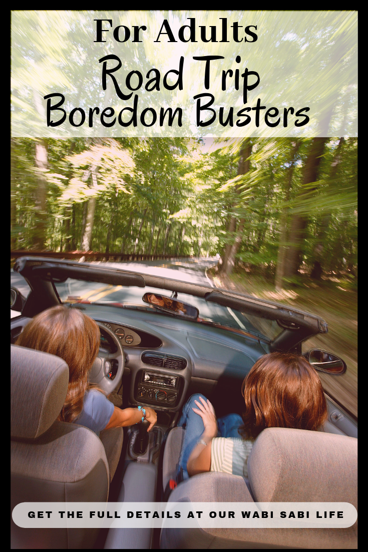 Looking for some fun ways to pass the time on your next road trip? Use these road trip boredom busters for adults on your next trip.